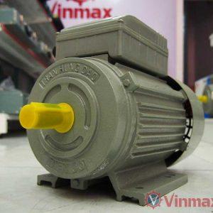 motor dien tran hung dao 3hp-vinmax.vn
